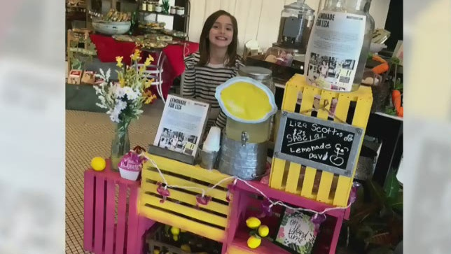 Ala. girl sells lemonade to fund her own brain surgery