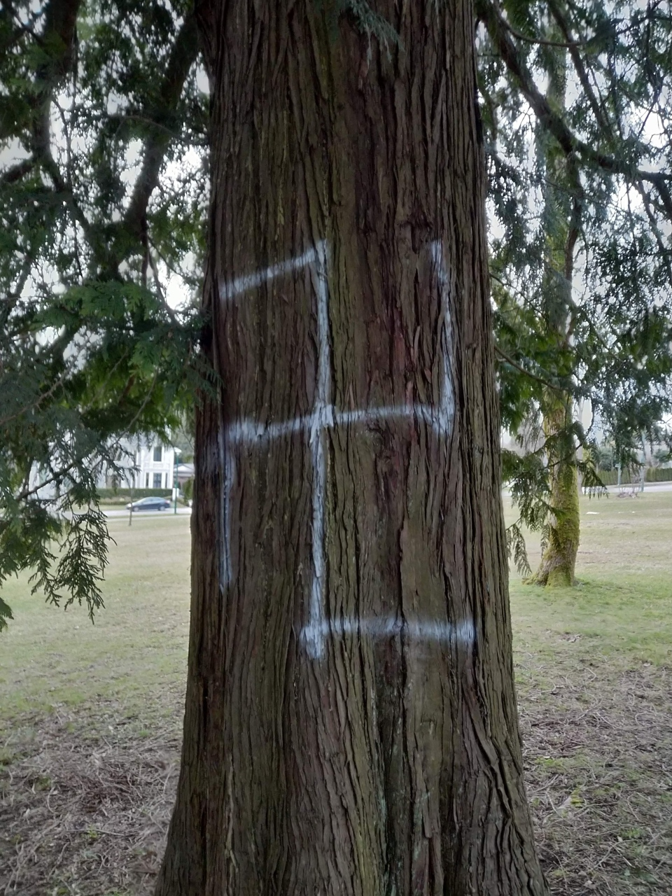 Swastika on tree