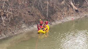 London Fire Department rescues a woman from the Thames River on Feb. 28, 2021. (London Fire Dept./Twitter)