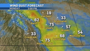 Wind gust forecast for Feb. 28, 2021.
