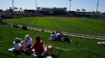 Fans sit in their COVID-19 social-distancing pods at the Goodyear Ballpark during the fourth inning of a spring training baseball game between the Cleveland Indians and the Cincinnati Reds, Sunday, Feb. 28, 2021, in Goodyear, Ariz. (AP Photo/Ross D. Franklin)