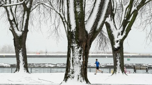 A man wearing shorts and a T-shirt runs among snow-covered trees on the boardwalk overlooking Lake Ontario in Toronto on Dec. 1, 2020. (THE CANADIAN PRESS / Nathan Denette)