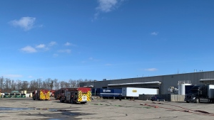 Fire trucks at a building on Struck Court in Cambridge on March 2, 2021. (Stephanie Villella / CTV Kitchener)