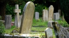 A cemetery is pictured in this stock photo. (Pexels)