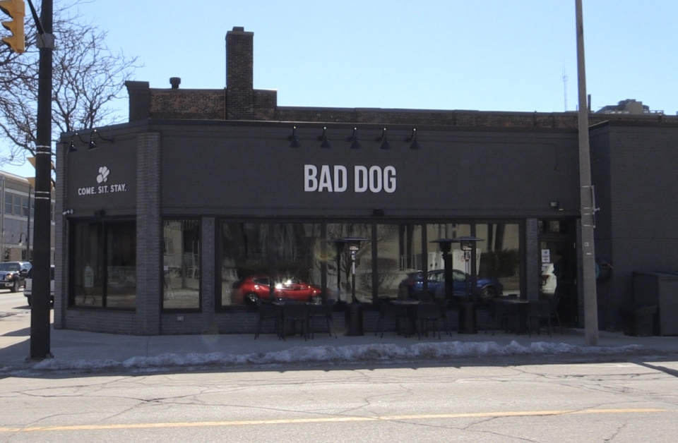 Bad Dog Restaurant