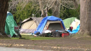 Tents are pictured at Beacon Hill Park in Victoria: March 2, 2021 (CTV News)