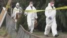 Duncan community reeling after homicide