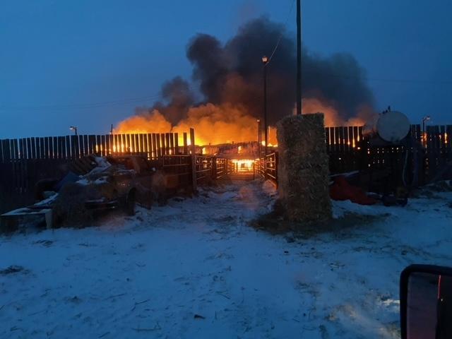 Pipestone Livestock Sales fire