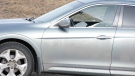 A Calgary woman had the window of her car shot out Wednesday as she was driving on 16 Ave. N.E. It's believed that a pellet gun may have been involved.