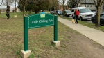 The newly replaced Dude Chilling Park sign is seen in a Twitter image shared by the Vancouver Park Board on March 3, 2021.