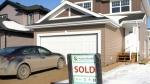 Homebuyers 'making that leap' despite rising price