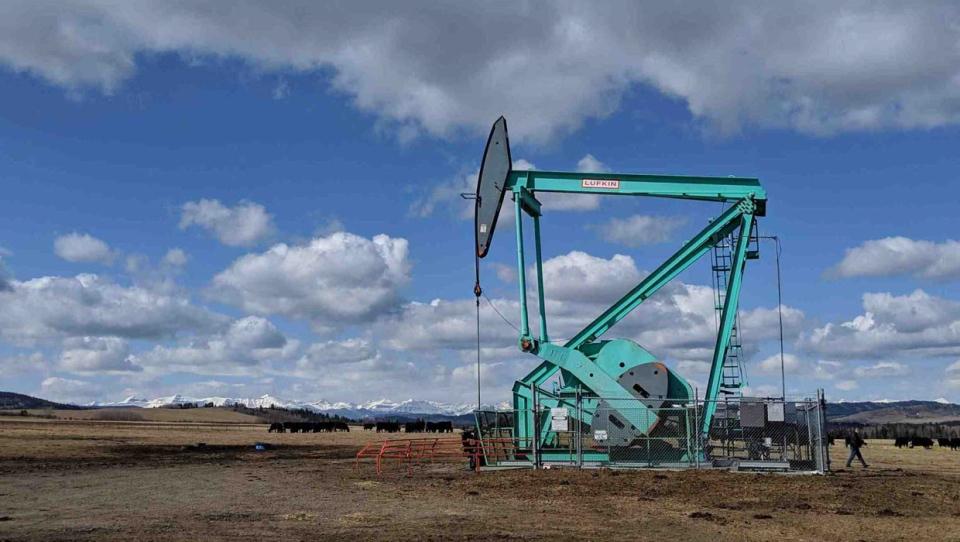 calgary, oil, energy, industry, oil prices