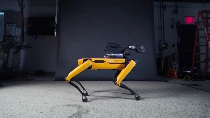 CTV National News: 'Bolt' the robot dog