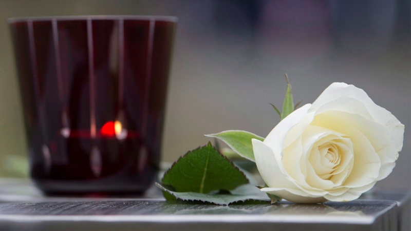 A white rose, as seen in this file photo, has been chosen as the official flower to remember victims of COVID-19 in Quebec. THE CANADIAN PRESS/Graham Hughes