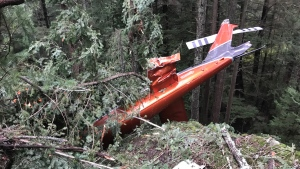 The wreckage of a helicopter is seen in a forested area of Bowen Island on Friday, March 5, 2021. (Tony Mainwaring)