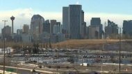 One year of COVID-19 in Alberta