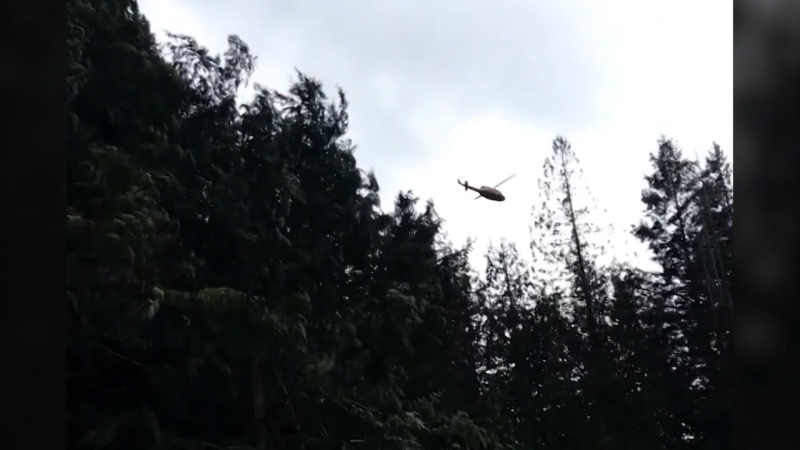 2 pilots survive helicopter crash on Bowen Island