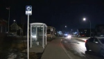 Calgary police are investigating an attempted child abduction that took place Friday afternoon in northeast Calgary