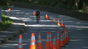 Stanley Park bike lane
