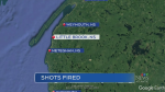 RCMP investigate shots allegedly fired into home