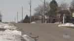Police investigate 2 stabbings in Waterloo Region