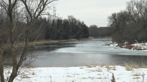 The Grand River watershed area on March 8, 2021 (Dan Lauckner / CTV News Kitchener)