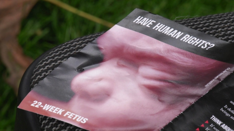 A portion of an anti-abortion pamphlet distributed in London, Ont. is seen in this file photo.