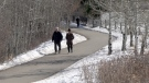 The city wantrs to hear from Calgarians about possible upgrades to 12 Mile Coulee Park.