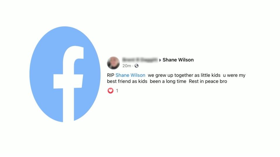 shane wilson