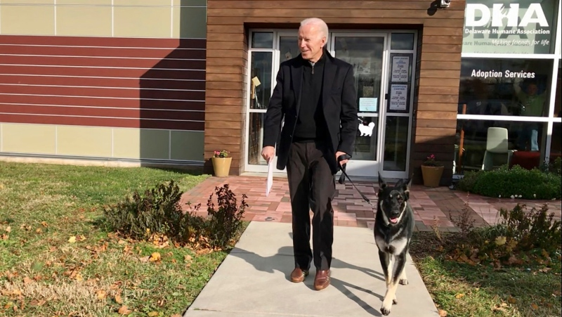 This Nov. 16, 2018, file photo provided by the Delaware Humane Association, shows Joe Biden and his newly-adopted German shepherd Major, in Wilmington, Del. (Stephanie Carter/Delaware Humane Association via AP)