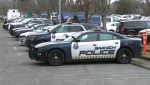 Saanich police vehicles are shown in this file photo: (CTV News)