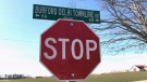 A stop sign recently replaced after thieves took it and other markers, is seen in Norfolk County Ont. on March 15, 2021. (Sean Irvine / CTV News)