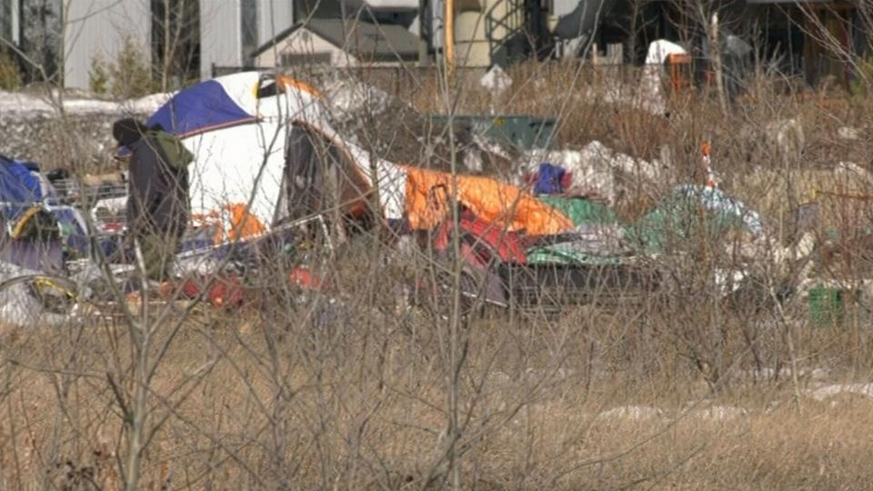 Transitional housing key in homeless battle