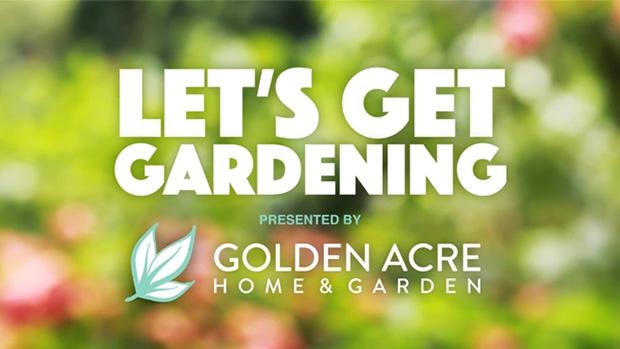 Golden Acre Lets Get Gardening HDR