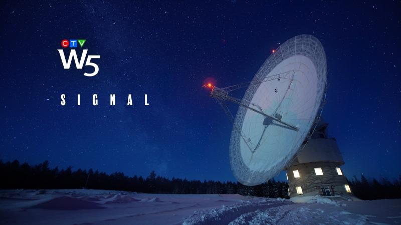 W5: Signal