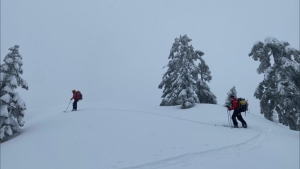 North Shore Rescue members search for a skier and snowboarder who went missing in the backcountry near Cypress Mountain on March 20, 2021.  (Facebook/North Shore Rescue)