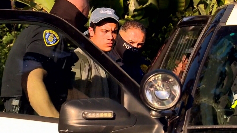 Jose Manuel Navarrete is seen being taken into custody by police, after he allegedly bypassed multiple barriers and