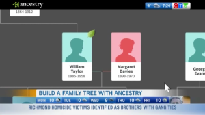 Family tree, ancestry