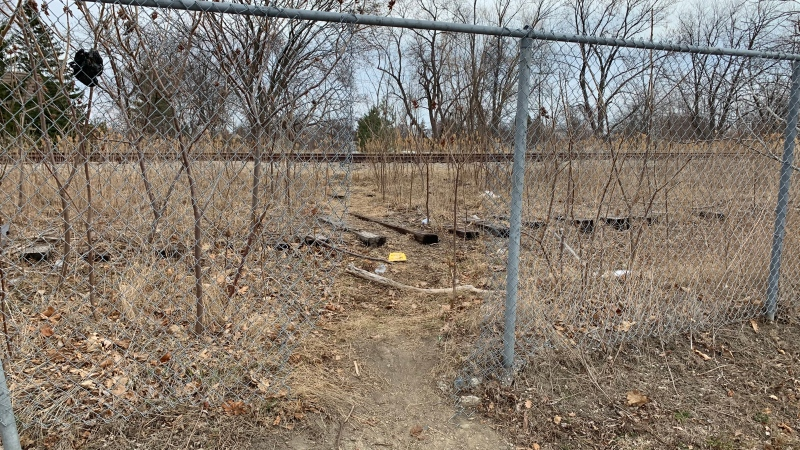 Gaping holes made in a chain link fence near the train tracks along South National Road in Windsor, Ont., on Tuesday, March 23, 2021. (Chris Campbell / CTV Windsor)