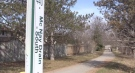 A teen was injured in a shooting in the area of the McNay Drain-South Park along Barker Street in northeast London, Ont. seen Thursday, March 25, 2021 (Daryl Newcombe / CTV News)