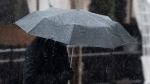 Rain beads off an umbrella as a man walks through downtown Ottawa Friday March 26, 2021. Heavy rain was expected throughout the day with 25-40mm expected. (Adrian Wyld/THE CANADIAN PRESS)