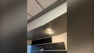 Damage to the roof at Bridge Street Kitchen following Thursday night's storm (Jessica Smith / CTV News Kitchener)
