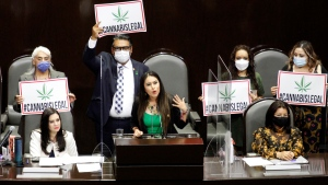 In April, Mexico's Senate is expected to approve a new law to legalize cannabis, two years after the country's Supreme Court ruled that it was unconstitutional to ban the drug. (Luis Barron/Eyepix Group/Barcroft Media/Getty Images via CNN)