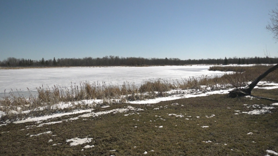 A body of water near Yorkton is pictured. (Kaylyn Whibbs / CTV News Yorkton)