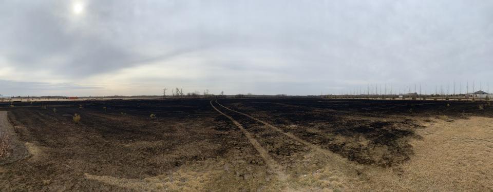 Shilo grass fire