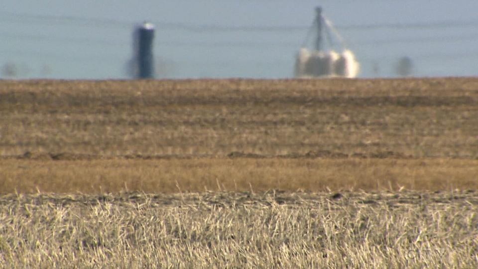 Dry fields Manitoba