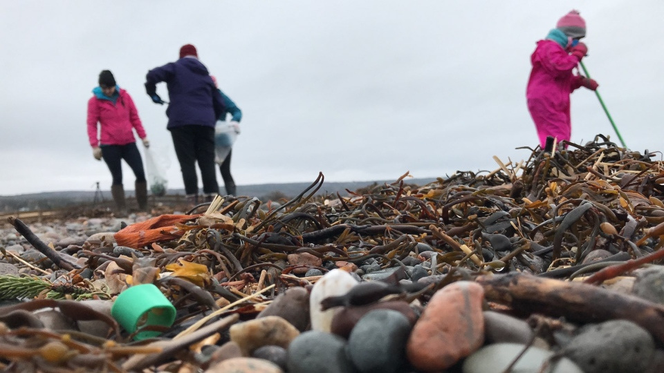 Scotian Shores – a group focused on cleaning up Nova Scotia's coastline, organized the cleanup event in Scots Bay on Monday.