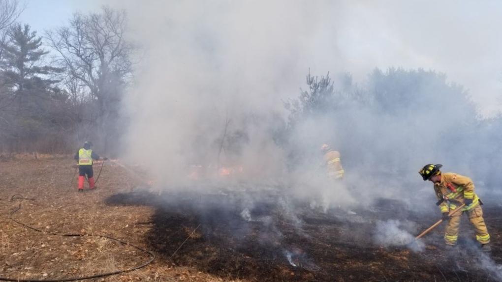 Ottawa grass fire generic