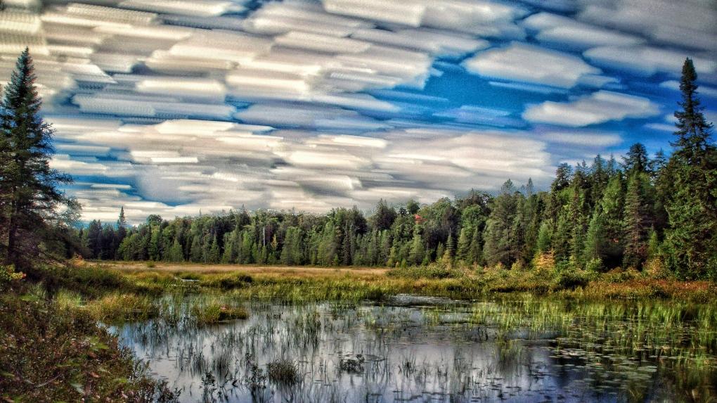 Maple Leaf Lake