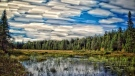 Algonquin Park's Maple Leaf Lake pictured in this August 2020 file photo. (Adam Frisk/CTV News)
